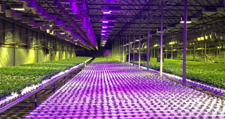 Commercial cultivation and indoor garden farm wholesale discount pricing on hydroponic systems, equipment and supplies in Anchorage, AK